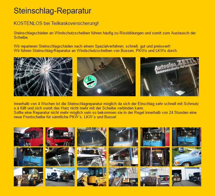 Steinschlag Service